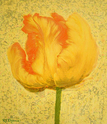 Yellow Parrot Tulip Art Print by Richard James Digance