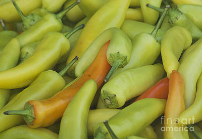 Photograph - Yellow Peppers by Jim And Emily Bush