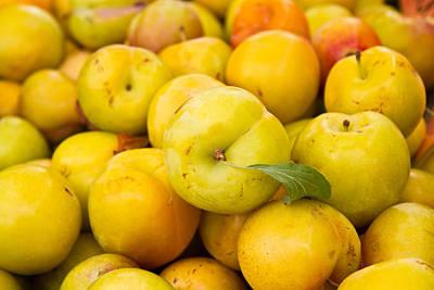 Photograph - Yellow Plums by Dina Calvarese