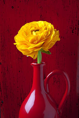Ranunculus Flower Photograph - Yellow Ranunculus In Red Pitcher by Garry Gay