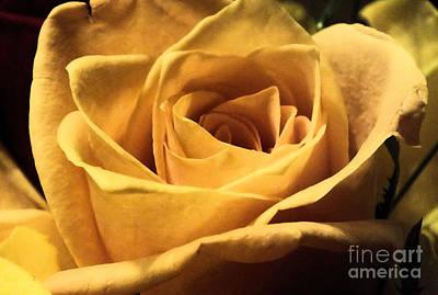 Photograph - Yellowrose2 by Tammy Herrin
