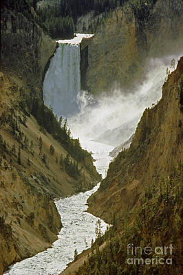 Photograph - Yellowstone Falls  by Craig Lovell