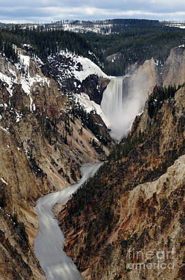 Photograph - Yellowstone Falls by Dan Friend