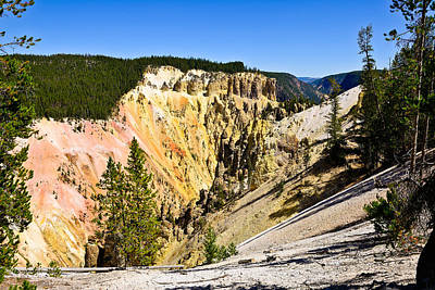 Grand Canyon National Park Photograph - Yellowstone Grand Canyon South Rim View by Greg Norrell