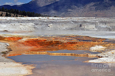Photograph - Yellowstone National Park Geothermal Reflections by Schwartz Nature Images