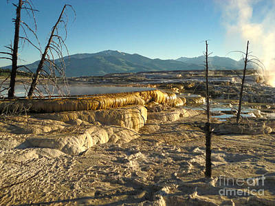 Yellowstone National Park - Minerva Terrace - 10 Art Print by Gregory Dyer