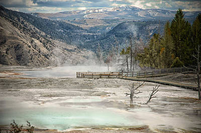 Yellowstone Park Original by Mary Timman