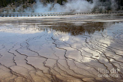 Photograph - Yellowstone Reflection by Sandra Bronstein