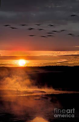 Yellowstone Sunrise Art Print by Eli Horowitz