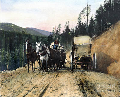 Photograph - Yellowstone: Traffic by Granger