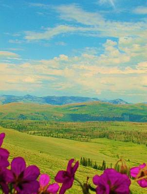 Yellowstone Valley Art Print by Virginia Lei Jimenez