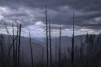 Photograph - Yosemite 0042 by Rich Berrett