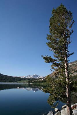 Photograph - Yosemite 0167 by Rich Berrett
