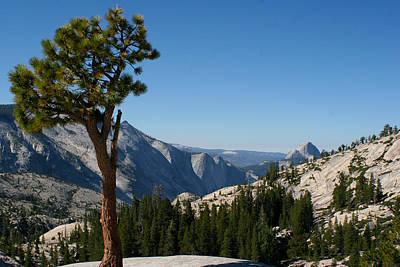 Photograph - Yosemite 0170 by Rich Berrett