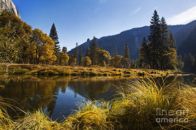 Photograph - Yosemite-dd102 by Craig Lovell