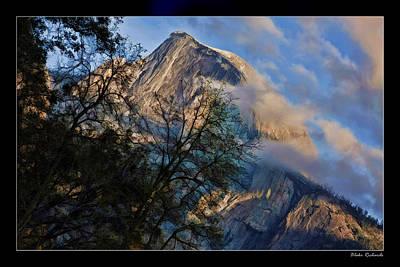 Photograph - Yosemite Half Dome Trees by Blake Richards