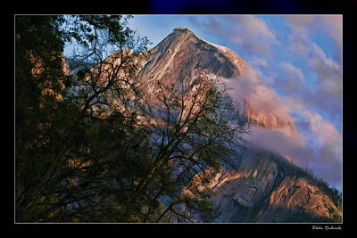 Photograph - Yosemite Half  Dome Trees Pink Sky by Blake Richards