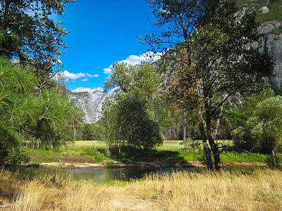 Photograph - Yosemite Meadow by Heidi Smith