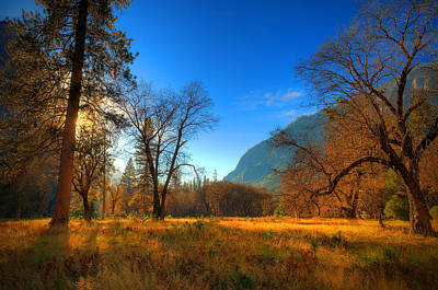 Nahmias Photograph - Yosemite National Park by Eyal Nahmias