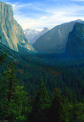 Photograph - Yosemite Park by C Sitton