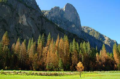 Photograph - Yosemite Valley by Lynn Bauer