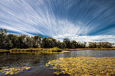 Art Print featuring the photograph You Cannot Be Cirrus by Tom Gort