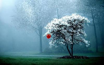 Tree Blossoms Digital Art - Yours Eva by Ilias Athanasopoulos