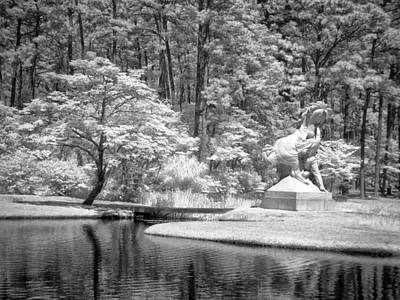 Photograph - Youth Taming Wild - Infrared by Bill Barber