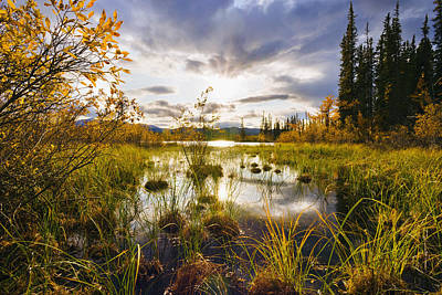 Yukon River Photograph - Yukon River And Fall Colours At Sunset by Yves Marcoux
