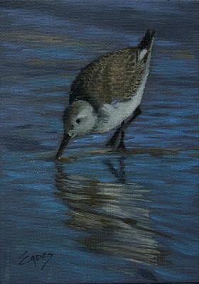 Sea Birds Painting - Yumm by Linda Eades Blackburn