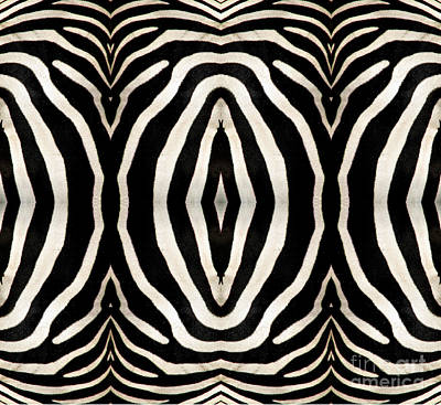 Zebra Hide Art Print by Rose Santuci-Sofranko