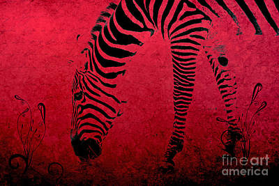 Photograph - Zebra On Red by Aimelle