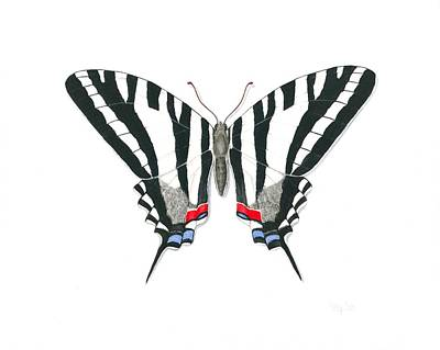 Painting - Zebra Swallowtail Butterfly by Anna Bronwyn Foley