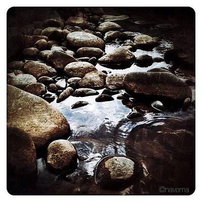 Rock Wall Art - Photograph - Zen by Natasha Marco