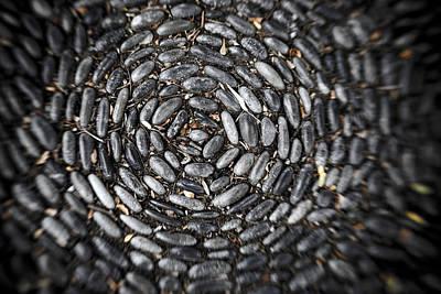 Photograph - Zen Stones by Marilyn Hunt