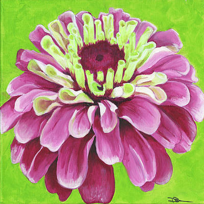 Zinnia Art Print by Debbie Brown