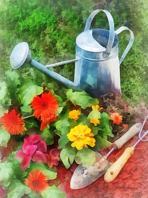 Photograph - Zinnias And Watering Can by Susan Savad