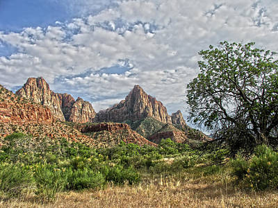 Zion National Park Art Print by Anne Rodkin
