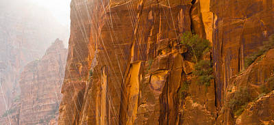 Photograph - Zion Storm by Adam Pender
