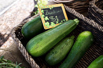 Zucchini Art Print by Tanya Harrison