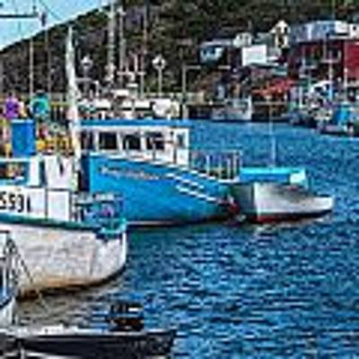 Petty Harbour Art Print by Perla Copernik