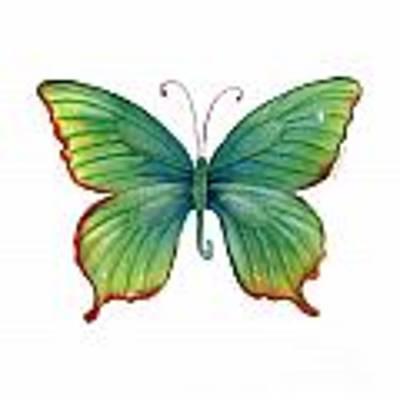 74 Green Flame Tip Butterfly Art Print by Amy Kirkpatrick