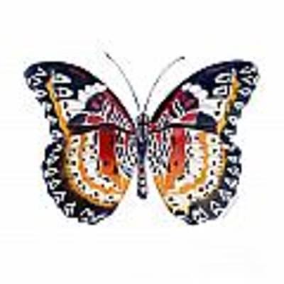 94 Lacewing Butterfly Art Print by Amy Kirkpatrick
