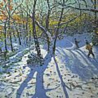 Allestree Park Woods November Art Print by Andrew Macara