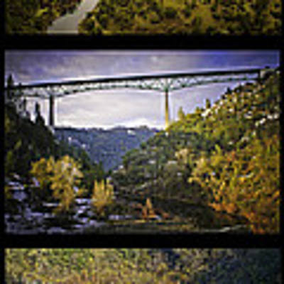 American River Triptych Art Print by Sherri Meyer