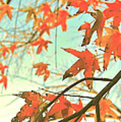 Autumn Dance Art Print by HweeYen Ong