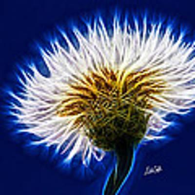 Basket Flower Inner Beauty Art Print by Nikki Marie Smith