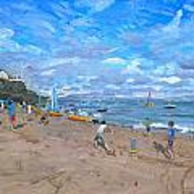 Beach Cricket Art Print by Andrew Macara