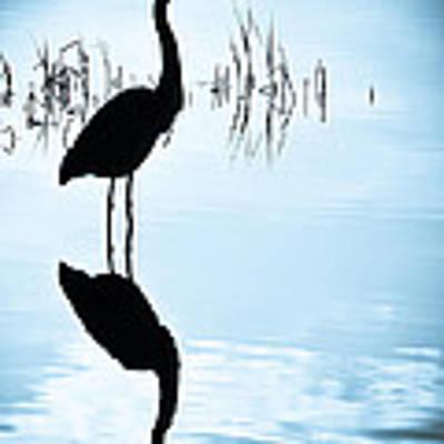 Blue Herons Art Print by Francis Trudeau