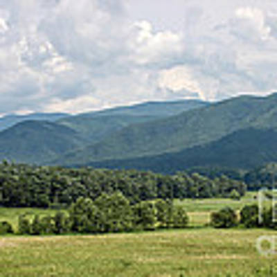 Cades Cove In Summer Art Print by Todd Blanchard
